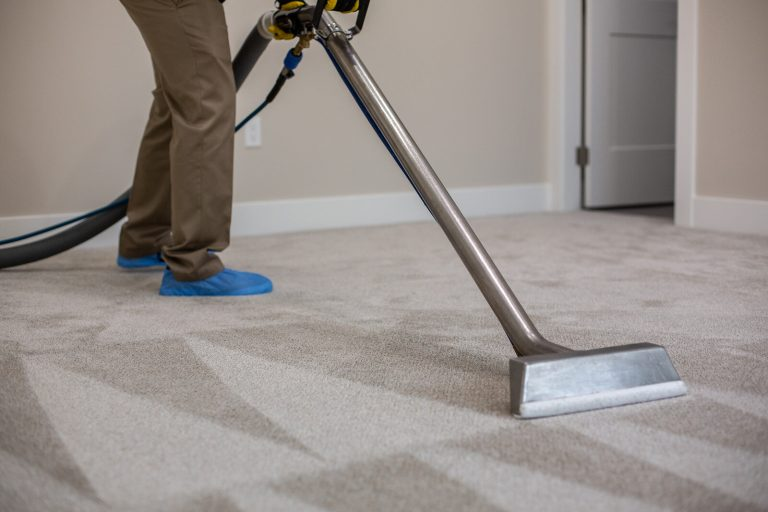 Carpet Cleaning Palm Beach